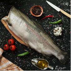 Тихоокеанский лосось - кижуч